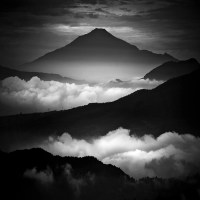 Monochromatic Photographs
