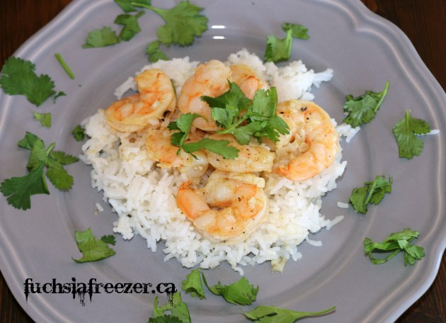 Shrimp on rice