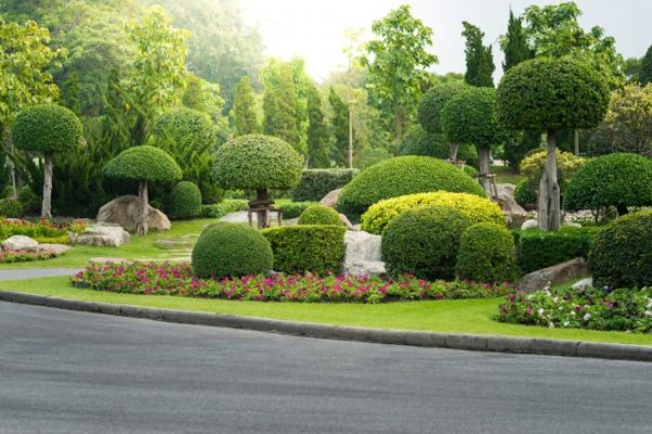 7 landscaping trends 2019