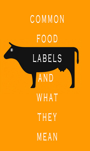Common Food Labels And What They Mean