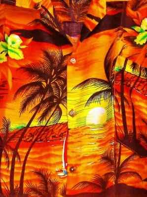 Hawaiian Shirt Alan Sheridan