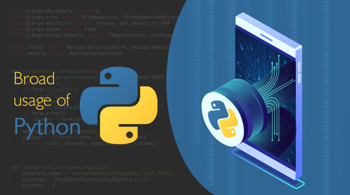 Why Programmers Prefer Python for Development?