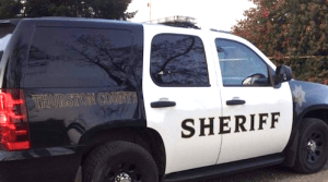 Dog skinned in Thurston County