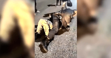 Baltimore Police Sergeant Beat by Mob