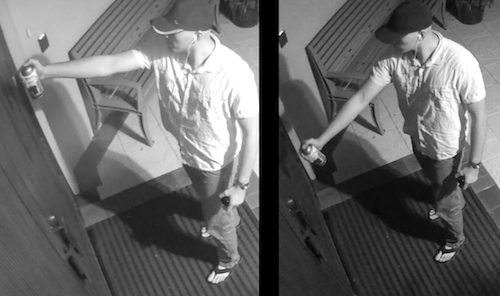 Man Allegedly Vandalizes Jewish Temple Caught on Camera