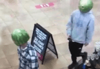 Melon-Headed Bandits