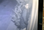 ID #20-462 Alleged Berkeley Burglary Suspect