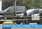 Woman fatally stabbed while walking her dog in San Dimas