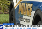 Florida Toddler Fatally Shoots Mother During Zoom Call