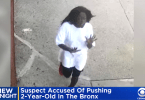 ID #21-370 Suspect Accused of Allegedly Pushing 2-Year-Old In The Bronx