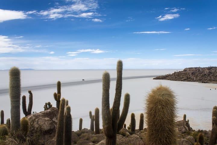 Primeiro dia no Salar de Uyuni - Isla Incahuasi