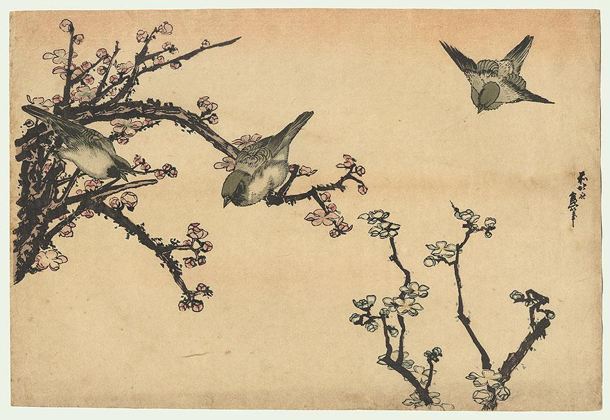 """""""Birds and Cherry Blossoms"""" Hokusai (1760 - 1849)"""