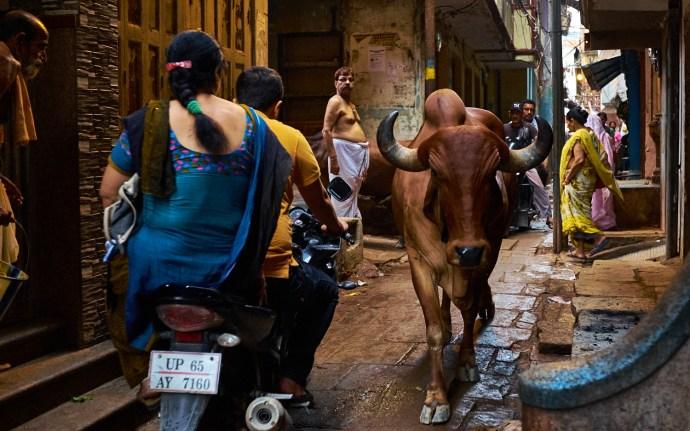 """Varanasi . Fuji X100S . 23mm . f/2.8 . 1/160"""" . ISO 1600"""