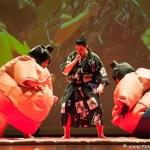 sumo wrestling 003