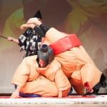 sumo wrestling 010