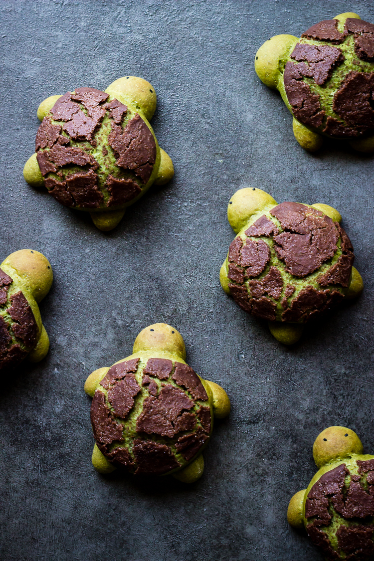 MATCHA MILK BREAD TURTLES