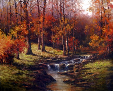 Bubbling Brook Fine Art Print by TC Chiu at
