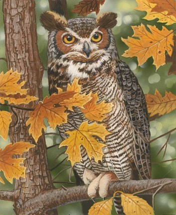 Autumn Owl Fine Art Print by William Vanderdasson at