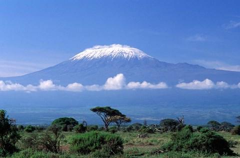 Africa Tanzania Mt Kilimanjaro landscape and zebra Fine