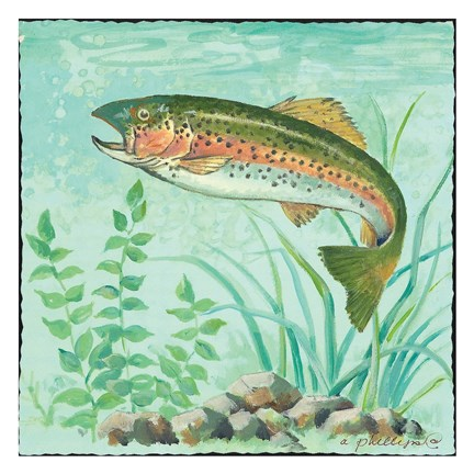 Trout Swimming Fine Art Print by Anita Phillips at