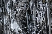 Worm_Morphology_Closeup