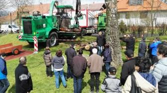 Das heimische Forstunternehmen Ralf Diel führte vor, wie mächtige Baumstämme gehäckselt werden.