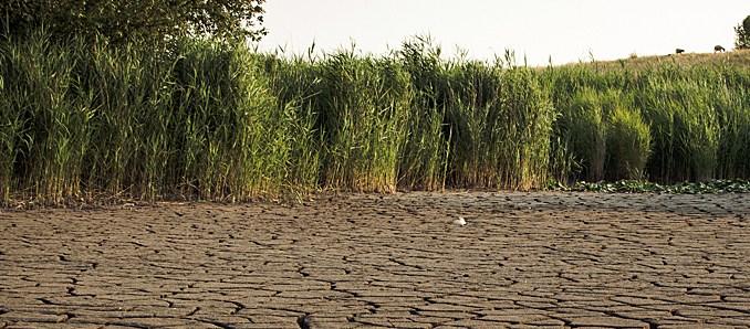 Dürre, Klima