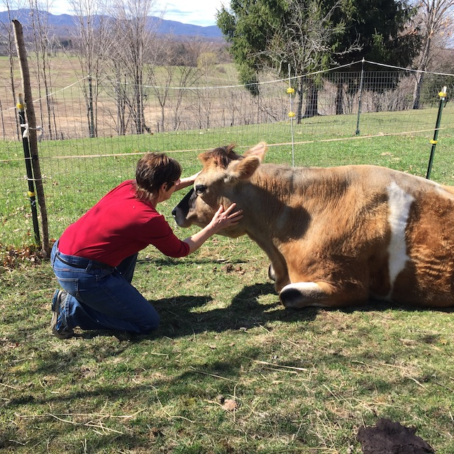 Carol and her cow Steppin