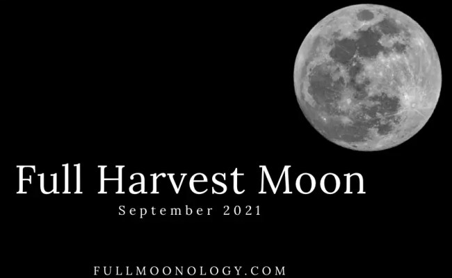 If you noticed you had an easier time getting out of bed this morning, you have mother natu. Full Harvest Moon 2021 Full Moon Day September 2021 When Is The Next Full Moon In 2021 ...
