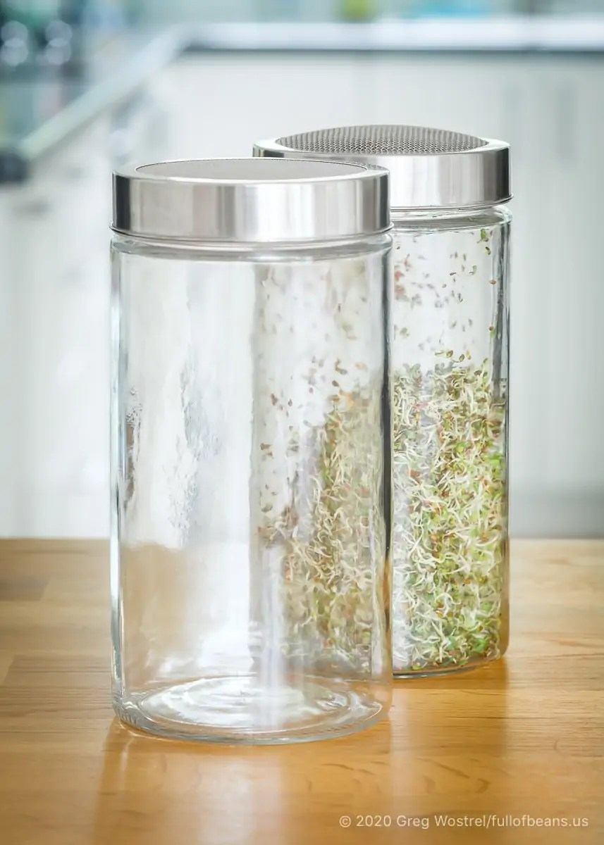 Large capacity glass sprouting jars for growing your own sprouts at home