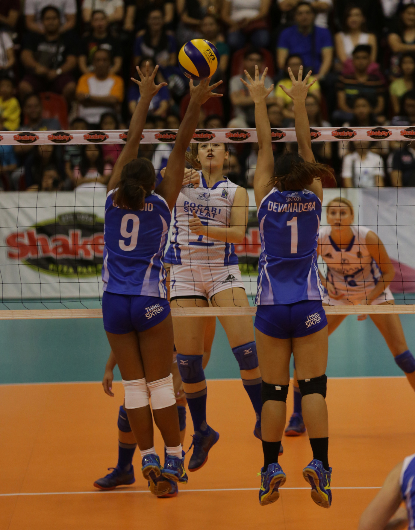Michelle Gumabao (7) of Pocari Sweat defies BaliPure's net defense made up ofr Dzi Gervacio (9) and Rysabelle Devanadera during their Shakey's V-League Reinforced Conference encounter at the Philsports Arena.
