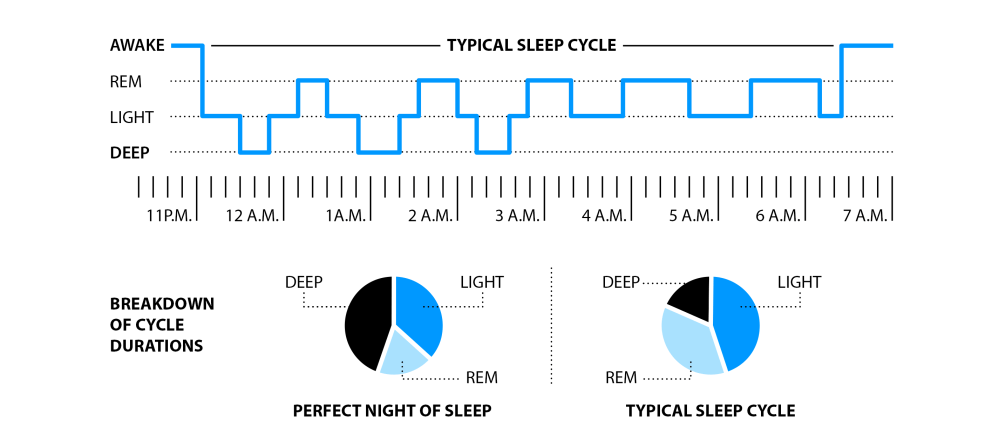 medium resolution of in a nutshell the sleeptracker monitor is about small day to day non invasive improvements for ms and mr everyone using the principles of cbm cognitive