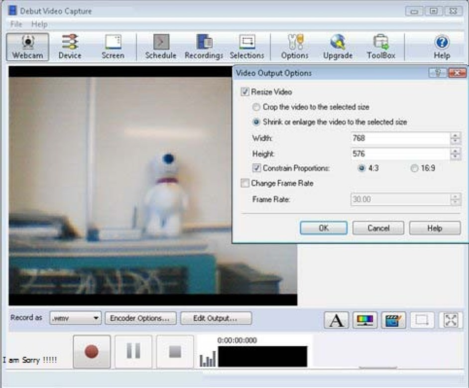 Debut Video Capture windows