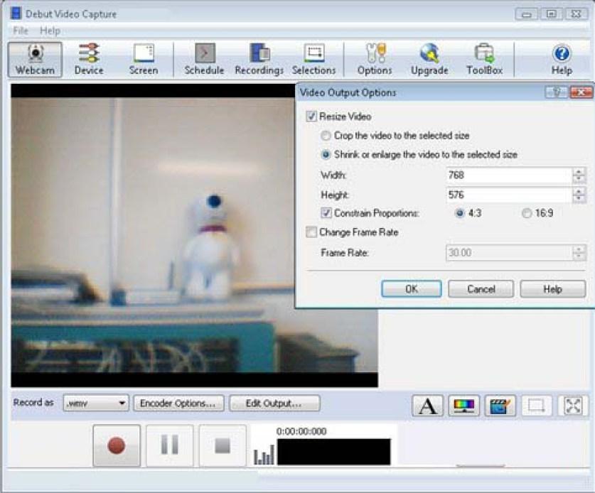 Debut Video Capture windows