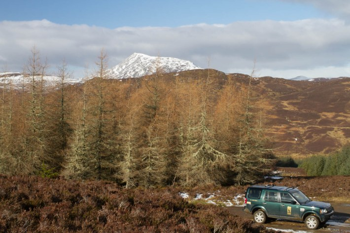 Highland Safaris, Perthshire