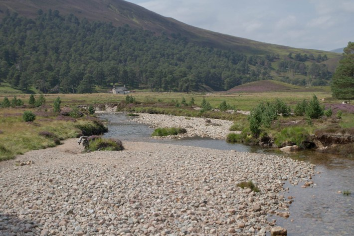 Lui Water, Mar Lodge Estate. Water running low on the river with the stone bed exposed