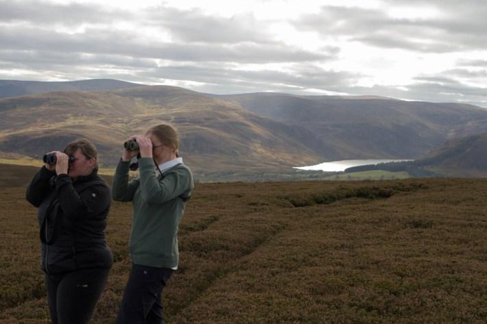 Tour guide, Glenesk Wildlife
