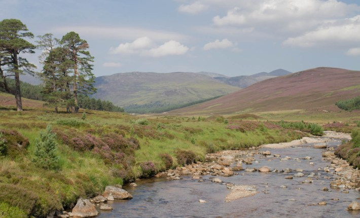 River running low. Blue sky and green hills in Scotland