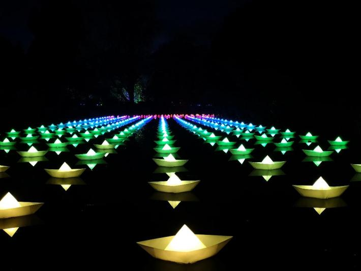 Christmas at the Botanics. Origami boats on water