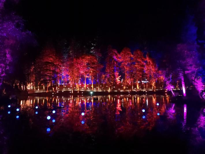 Enchanted Forest. Coloured lights on the trees and reflected on the lock