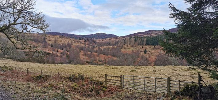 Image of: hillsides in late winter. A metal gate in the foreground. Loch Ordie walk in Perthshire