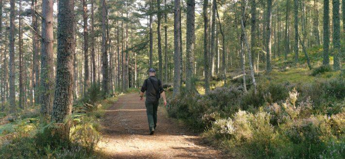 Image of: Loch Ness Walk
