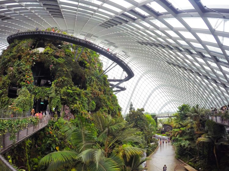 Singapore Cloud Forest Dome