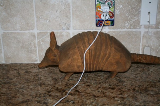 Edie had to get a picture of the kitchen armadillo.