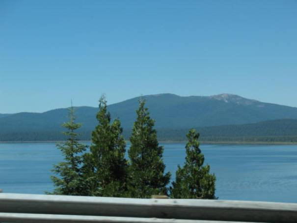 Lake Almanor, pretty full, or at least appears to have plenty of water.