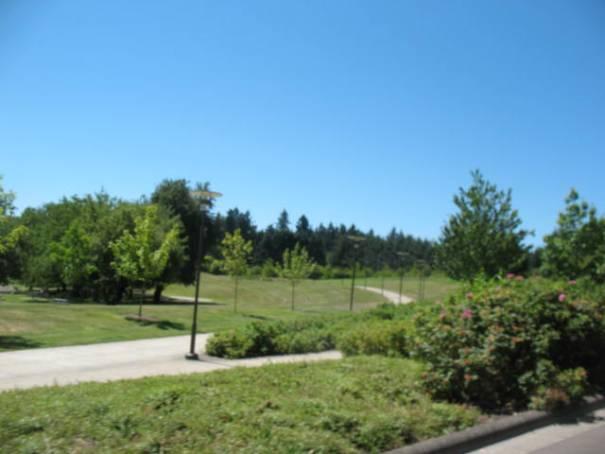 Large park area.