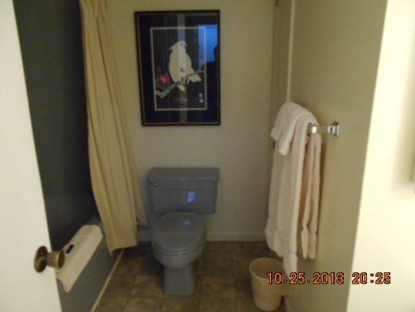 Toilet and tub.