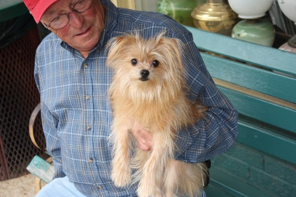 Sweetie, half Pomeranian and half Yorkshire terrier.  This was a nice Wookie looking dog.