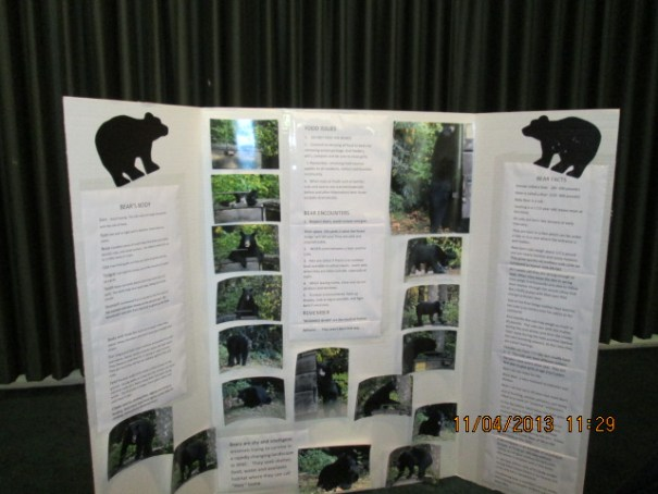 Bear information poster.  Bottom line, don't feed and if attacked get big and fight back.
