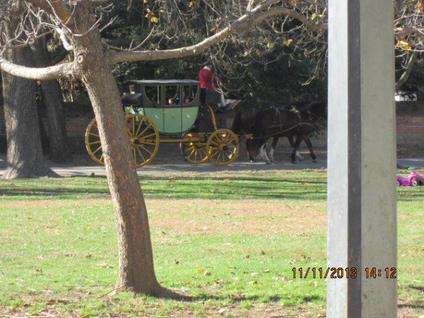 All the carriage rides were full today.